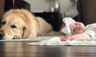 Baby Harper, born after IVF helped her mom overcome polycystic ovary syndrome, lying on a blanket next to her dog | Dallas IVF | Frisco, TX