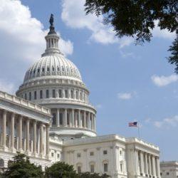 Update on Fertility Legislation
